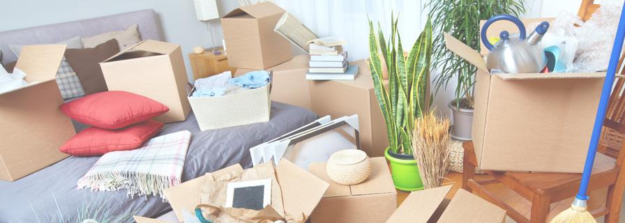 Cardboard boxes full of belongings in a living room