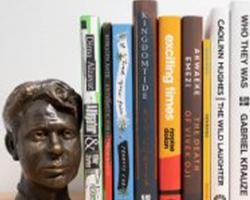 Book case of books