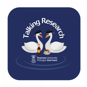 Talking Research Logo - two swans wearing Doctoral caps, talking over a drink of beer/cup of tea